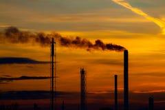 восходящий поток теплого воздуха силы завода Стоковая Фотография RF