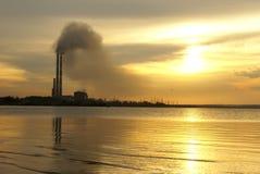 восходящий поток теплого воздуха силы завода Стоковые Фотографии RF