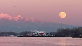 Восход луны Рекы Fraser и птицы 4K UHD видеоматериал
