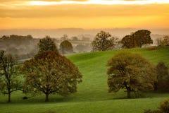 Восход солнца в вересковых пустошах Стаффордшира Стоковые Фотографии RF
