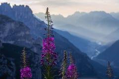 Восход солнца в горах доломитов, Италия Стоковые Изображения