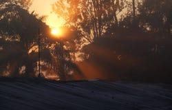 Восход солнца в ферме в Kwanza Sul, Анголе стоковое изображение rf
