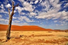 Восход солнца в DeadVlei - Намибии стоковые изображения rf