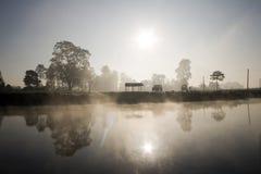 восход солнца джунглей Стоковое Фото