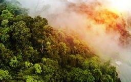 Восход солнца дождевого леса сверху - Стоковая Фотография RF