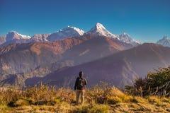 Восход солнца дозора человека на холме Poon горной цепи Annapurna в Непале Активный мужской туризм Trekking в Гимале стоковое изображение rf