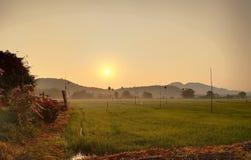 Восход солнца и обширные поля стоковое фото rf