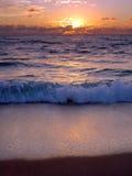 восход солнца ладони пляжа Стоковое Изображение