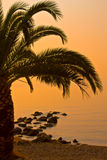 восход солнца ландшафта пляжа красивейший Стоковое Фото