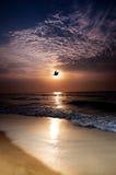 восход солнца моря Стоковые Изображения