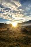Восход солнца над злаковиком стоковое фото rf