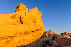 Восход солнца над национальным парком дерева Иешуа Стоковые Фотографии RF