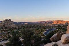 Восход солнца над национальным парком дерева Иешуа Стоковая Фотография RF