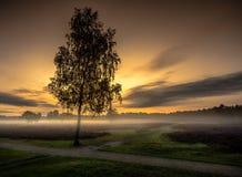 Восход солнца над пустошью стоковая фотография