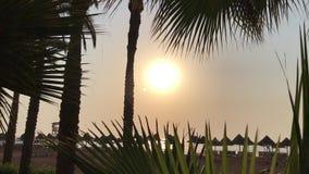 Восход солнца над штилем на море, солнечная дорога акции видеоматериалы