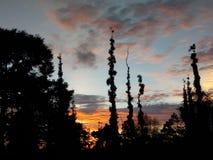 Восход солнца на горе Стоковое Изображение