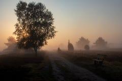 Восход солнца на ландшафте вереска стоковое фото rf