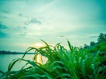Восход солнца на Меконге, Таиланде стоковая фотография rf