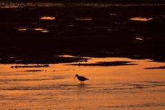 Восход солнца на мосте 4 миль Стоковые Изображения RF