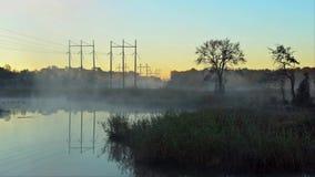 Восход солнца на озере Сильный туман, силуэты деревьев в лучах восходящего солнца акции видеоматериалы
