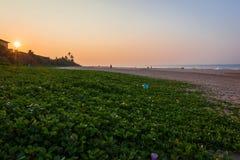 Восход солнца на пляже в Шри-Ланке стоковые фотографии rf