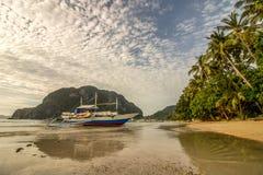 Восход солнца на пляже кокосовой пальмы Стоковая Фотография RF
