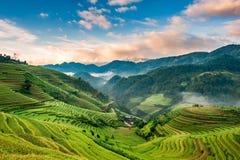 Восход солнца на террасных полях риса Стоковое Фото