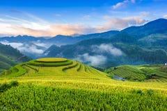 Восход солнца на террасных рисовых полях Стоковая Фотография