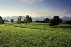 Восход солнца на утре на зеленом поле стоковые фотографии rf