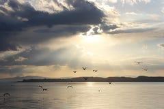 Восход солнца на Mono озере, США Стоковое Фото