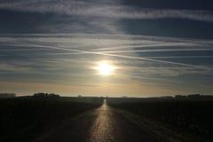 Восход солнца на Wineyard в Франции Стоковые Фото