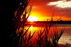 восход солнца озера Стоковые Фото