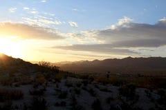 Восход солнца пустыни в долине Калифорнии юкки Стоковые Изображения