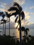 Восход солнца раннего утра в Австралии Стоковые Фотографии RF