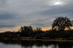 Восход солнца реки утра Вайоминга Стоковое Изображение RF