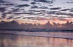 восход солнца силуэта птицы драматический Стоковые Изображения