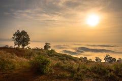 Восход солнца с взглядом утра стоковое изображение rf