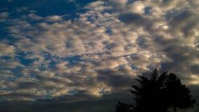 Восход солнца с облаками и деревом стоковое фото rf