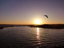 Восход солнца таза озера Juyan стоковая фотография rf