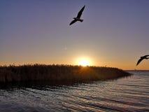 Восход солнца таза озера Juyan стоковые фото