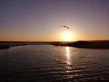 Восход солнца таза озера Juyan стоковое изображение