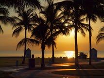 восход солнца тропический Стоковое Изображение