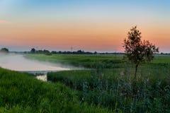 восход солнца тумана Стоковое Изображение RF