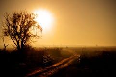 восход солнца утра зарева Стоковое фото RF