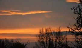 Восход солнца утра с деревьями в› Å™ice LitomÄ Стоковые Фото