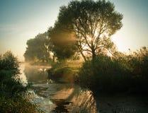 восход солнца утра Стоковые Изображения