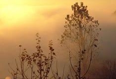 восход солнца Стоковые Фотографии RF