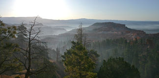 восход солнца bryce Стоковая Фотография RF