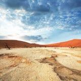 восход солнца namib пустыни Стоковые Фото
