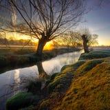 восход солнца park4a Стоковая Фотография RF